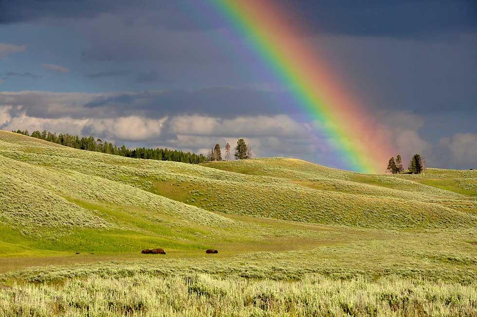 Regenbogen Farbe